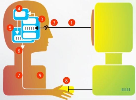 cognitive_model